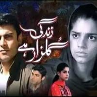 Zindagi Gulzar Hai ~ Episode 14 Review