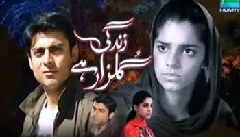Zindagi Gulzar Hai ~ Episode 26 Finale Review – Desi Rants N Raves