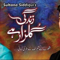 Zindagi Gulzar Hai ~ Episode 13 Review