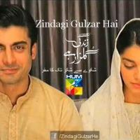 Zindagi Gulzar Hai ~ Episode 17 Review