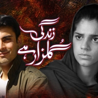 Zindagi Gulzar Hai ~ Episode 22 Review