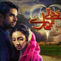 Sadqay Tumhare ~ Episode 6 Review