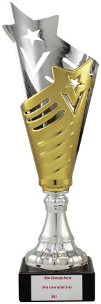 plastic-gold-silver-trophy-cup-1450--3503-p2